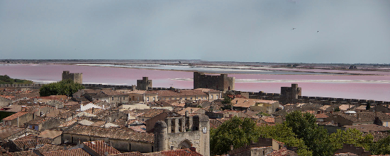 Aigues Mortes panorama