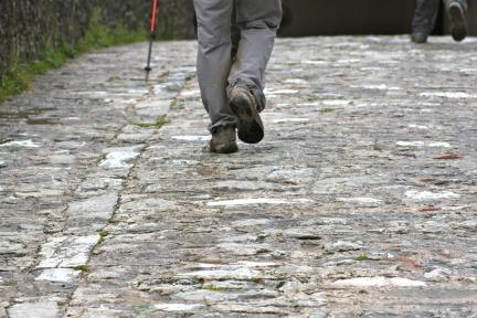 Camino Steps