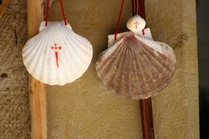 Camino Sea Shells