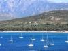 Corsica Calvi Harbor