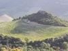 Corsica Patromonio
