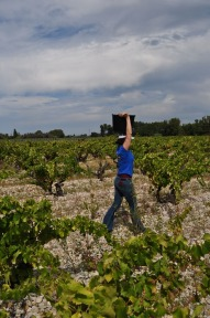 Domaine Rouge-Bleu Grape Heaven in Provence