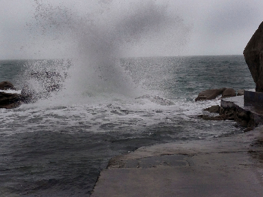 Sandycove - Forty Foot via @GingerandNutmeg