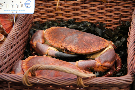 Crab #France #Seafood #Markets @GingerandNutmeg