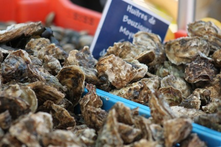 market-oysters
