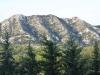 Les Alpilles view