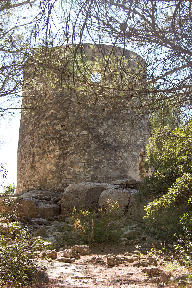 Windmill - Ramet