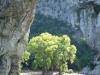 Ardèche Pont d'Arc