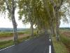 Provencal Roads