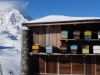 Val-D\'Isere-bee-hives