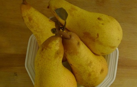 Pears in Season