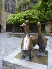 Sarlat Geese #Dordogne #France @GingerandNutmeg