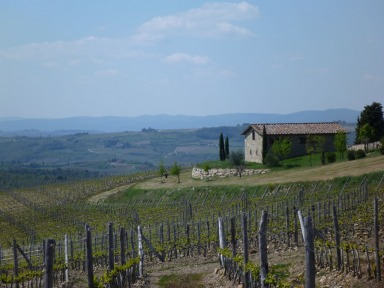 Tuscany classic view