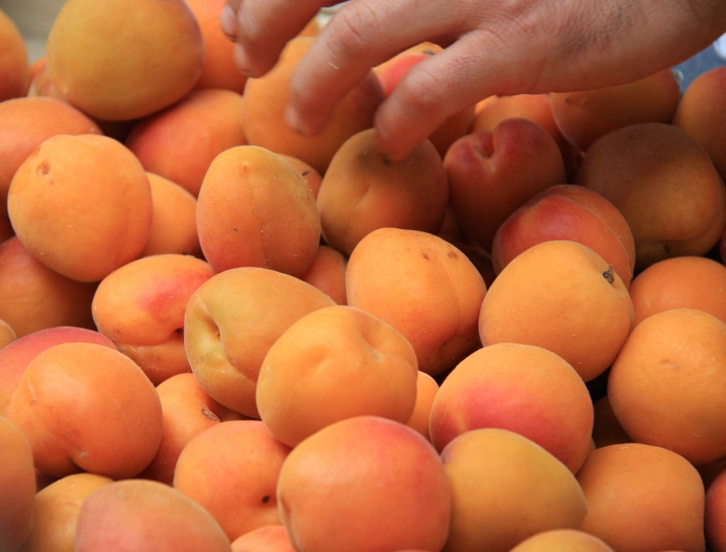 Apricots in Provence #Apricots #Markets #Provence @GingerandNutmeg