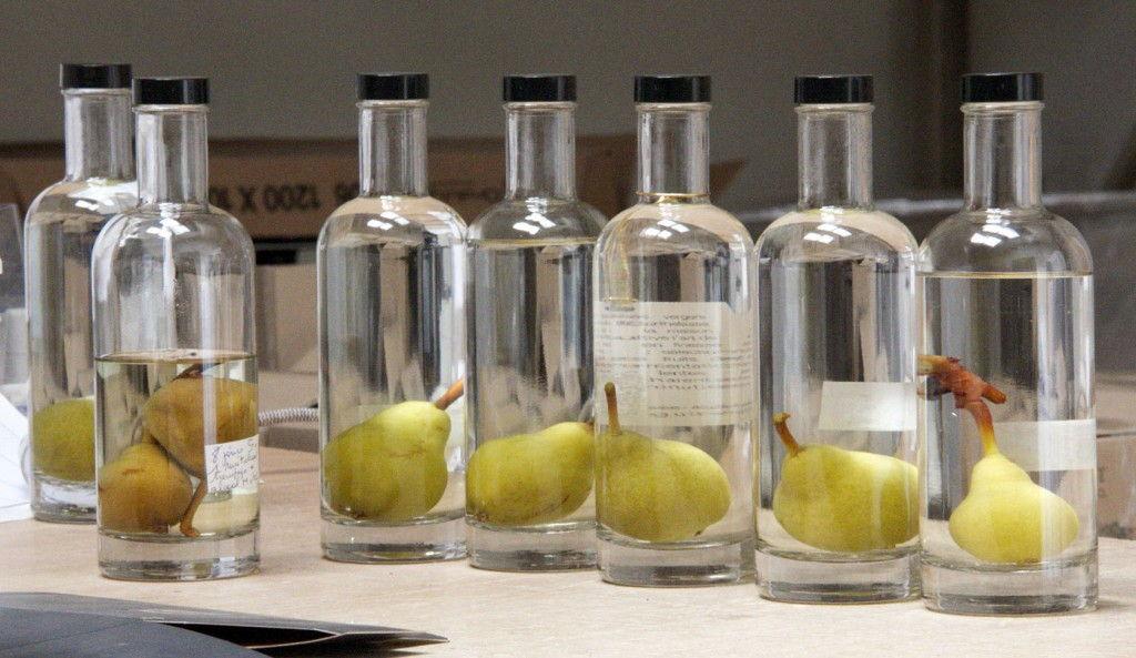 Manguin Bottles #ManguinDistillery #Provence #Avignon