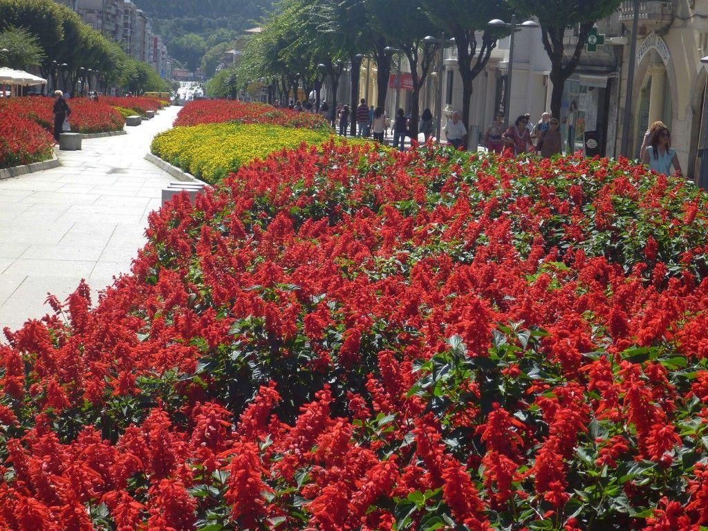 Braga Public garden #Portugal #Braga @GingerandNutmeg