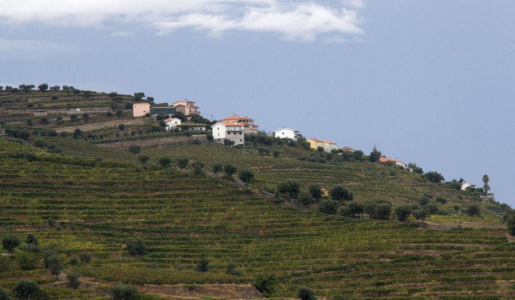 Douro Valley views #Portugal #Douro @GingerandNutmeg
