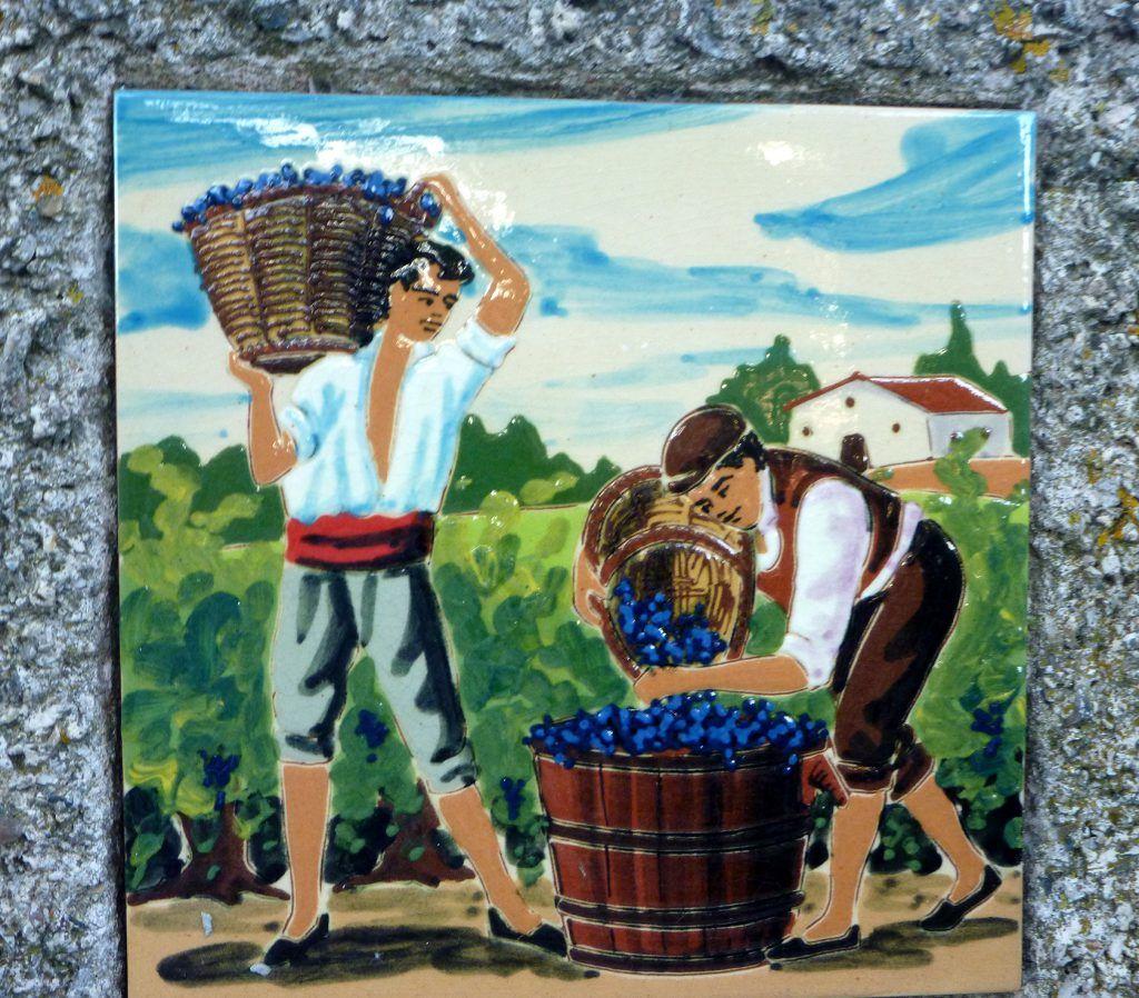 Languedoc wine @GingerandNutmeg